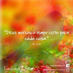 Frases de Deus, Amor de Deus, Salmos, Bíblia Sagrada, Frases Bíblicas, Jesus, Livro dos Salmos, Palavra de Deus, Louvor, espiritualidade.