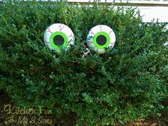 Spooky Bush Eyes Outdoor Craft...made from plastic pumpkin buckets that cost 1 dollar!