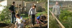 Huertos Compartidos, una plataforma web de banco de tierras que promociona la agroecología