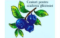 Salvia, Eggplant, Vegetables, Plant, Sage, Eggplants, Vegetable Recipes, Veggies