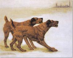 Image from http://prints.encore-editions.com/350/0/maud-earl-irish-members-irish-terriers.jpg.