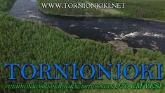 Tornionjoki - Vuennonkoski Fly Fishing - Vuennonkoski Perhokalastus. #tornionjoki #vuennonkoski #matkakoski #fishing #kalastus #riverbug #putkiperhot #finnlures #salmon #salmonfishing #saumon #lachs #laks #spinfluga #punttikalastus #flyfishing #perhokalastus #rangerkalavinkit #repofly #mustakettu #lax #laxfiske #visitlapland #visittornio #tornio #lohenkalastus #kukkolankoski #kattilakoski #lohensoutu #lohivaappu #vaappu #heittokalastus #korpikylä #summer #sights #sweden #lohiperhot #diy… Visit Sweden, Salmon Fishing, Fly Fishing, Finland, Photo S, River, Summer, Pictures, Salmon