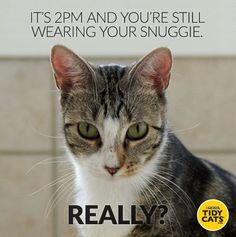 Repin if your pet motivates you to get out of bed! #JoyofPets
