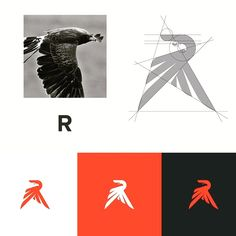 Beautiful Logo Design | eagle + R letter concept ☆★☆ Need a professional, unique logo for your business? PM us!