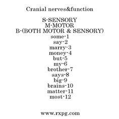 cranial+nerve+mnemonic | http://www.vourakis.gr/cranial-nerves-mnemonic&page=5