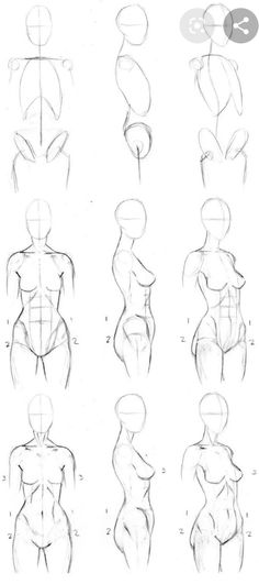 I promised that I'd make him a body-drawing tutorial. ^_^ It's by no means perfect, just explains how I draw my human bodies. Body Sketches, Art Drawings Sketches, Art Sketches, Hand Drawings, Art Illustrations, Skull Drawings, Skull Illustration, Figure Drawings, Medical Illustration
