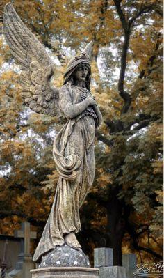 Реставрация статуй из мрамора в Киеве и Киевской области. Качественный ремонт скульптуры без демонтажа с места установки на кладбище. Цена реставрации мраморной статуи, согласно Договора ремонта памятника.