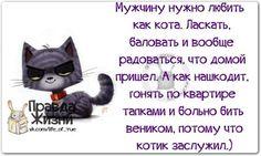 VkRc9lEKklw.jpg (604×362)