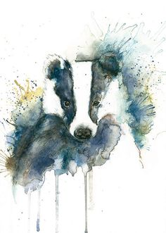 Badger print Watercolour print Splash animal painting Blue wall art Animal art print Splash badger art Home deco art Badger painting blue