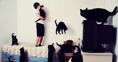 My name is Andreanne Lupien and here's my set of photos dedicated to all the ''Crazy Cat Lovers'' out there! The series of pictures honors cat lovers surrounded by their loved ones. Meow.