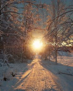 I     so love snow covered country roads...so tranquil.