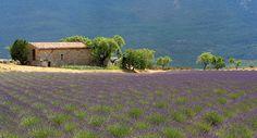 Landscape Provence France, Provence Adventure