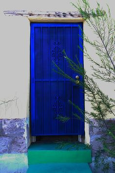 Tucson security door - I would love to take a series of pics of color doors and display in frames