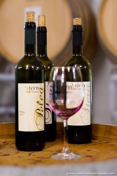 Stern, in Kibbutz Tuval near Carmiel in Northern Israel, is a boutique winery which makes wines that seriously rock #wine #winelover #foodietravels #travelblog #wineblog #foodblog #visitisrael #sternwinery