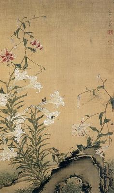 (Japan) Flowers by Ito Jakuchu 千葉市 美術館. Japanese Art Styles, Japanese Artwork, Japanese Painting, Japanese Prints, Korean Painting, Chinese Painting, Chinese Art, Ink Painting, Watercolor Art
