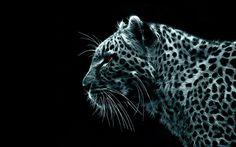 Leopard - Zeichnung