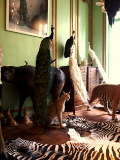I also love taxidermy! (ethically sourced only!)