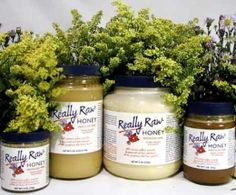 Completely heal wounds, infections, rashes, even ulcers with Raw Honey.  people with FMS,CFS,MCS,GWI, heal very slowly. I have had raw honey to heal wounds on me that Neosporin couldn't.