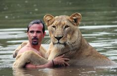 """Zoologist and self-taught animal behaviorist Kevin Richardson, aka """"The Lion Whisperer,"""" has a unique relationship with animals that has been cultivated Kevin Richardson, Beautiful Cats, Animals Beautiful, Facepalm Meme, See Yourself, Animals And Pets, Cute Animals, Wild Animals, Lions Photos"""