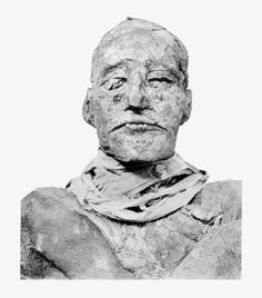 King Ramesses III was murdered. The first CT scans to examine the king's mummy reveal a cut to the neck deep enough to be fatal.Ancient documents including the Judicial Papyrus of Turin say that in 1155BC members of his harem attempted to kill him as part of a palace coup.