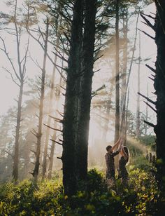 engagement pictures in woods