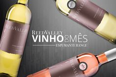 For the month of August we are featuring ReedValley Espumante Range – which is a firm favourite amongst the ladies. Silver and Rose Espumante. Wine Terms, Portuguese Words, Wine Auctions, Lemonade, Wines, Bottle, Wine Label, Sparkling Wine, Flask