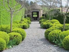 Striking Formal Garden Projects For Your Outdoor Enjoyment Are You Inspired? Visit Us For More Foraml Garden InspirationsAre You Inspired? Visit Us For More Foraml Garden Inspirations Outdoor Garden Decor, Diy Garden, Garden Cottage, Garden Paths, Walkway Garden, Garden Projects, Garden Hedges, Shade Garden, Formal Garden Design