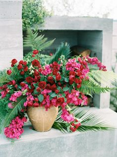 red garden roses and bougainvillea with ferns Bougainvillea Wedding, Wedding Flowers, Pink Flowers, Beautiful Flowers, Planter Box Centerpiece, Large Flower Arrangements, Tropical Garden, Floral Bouquets, My Flower
