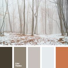 The orange is similar to the terra-cotta tile. Left-side colors look like shades of gray to brown, with pale ice blue.