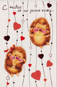 VERY RARE MARINA FEDOTOVA HEDGEHOGS VALENTINE'S DAY Russian modern greeting card | eBay