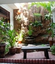 Best place to learn how to create your own indoor garden.  #indoor #garden #gardening #indoorgarden #indoorgardening