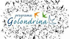 Estancias de alumnos argentinos descendientes de murcianos http://www.um.es/actualidad/gabinete-prensa.php?accion=vernota=41631