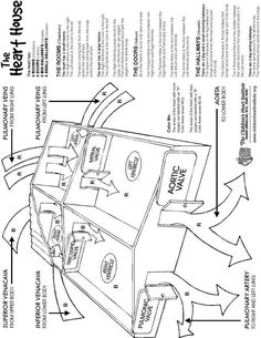 biology coloring pages biology coloring bookjpg 22803081 Lab