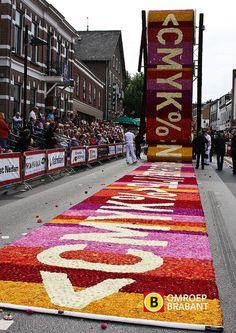 """Bloemencorso Zundert 2012 by Omroep Brabant.   """"Printer"""" design: Ton van Beek, Jesse Verheijen en Robin Schijfs."""