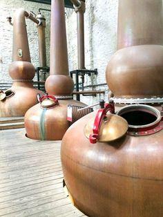 Copper Pot Stills at Woodford Reserve - Bourbon Tour    ShesCookin.com