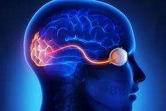 Come Rilassare il Nervo Ottico e gli Occhi