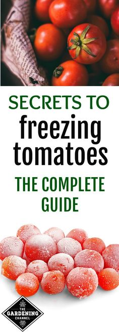 Guide to freezing tomatoes.   You spend time and energy in your garden planting and caring for your tomatoes.  Don't let any log to waste.