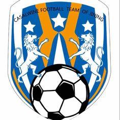 Soccer Ball, Football, Logo, Sports, Soccer, Hs Sports, Futbol, Logos, European Football