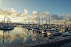 Shelter Cove Marina, San Diego.  Click on photo to purchase prints!