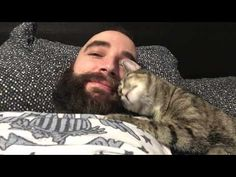 This Video of a Cat Cuddling Her Human Is The Sweetest Thing You Will See Today   One Green Planet