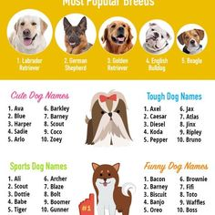 Top Dog Names Of This Year Dog Names Top Dog Names Best Dog Names