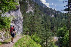 unterwegs am 1. Wiener Wasserleitungsweg im Höllental Mount Rainier, Austria, Wanderlust, Mountains, Outdoor, Nature, Travel, Holidays, Road Trip Destinations