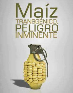 Si #Peru pudo, porqué nosotros no? #Monsanto Fuera de #Colombia!!!!   Por la Dignidad del #Campesino, por la Salud de su Familia y la Sostenibilidad del Planeta: No más organismos genéticamente modificados!!!! #NoTransgénicos