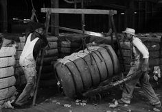 Workers weighing cotton bales in Houston, 1941. Photo from SMU
