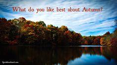 Question - Autumn