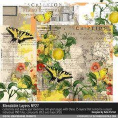 Blendable Layers No. 27 #vintage #painted #collage #collageart #butterfly #yellow #lemons #design #designerdigitals #digital #download