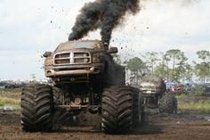 Jacked up trucks dodge Jacked Up Trucks, Ram Trucks, Dodge Trucks, Diesel Trucks, Cool Trucks, Pickup Trucks, Cool Cars, Lifted Dodge, Truck Memes