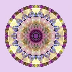 """""""Mandalas from the Heart of Surrender"""" #2 - from New World Creations"""