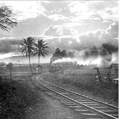 Near the post on the Oahu Railway Hawaiian Goddess, All About Hawaii, Hawaii Pictures, Railroad History, Hawaii Homes, Aloha Hawaii, Vintage Hawaii, Oahu