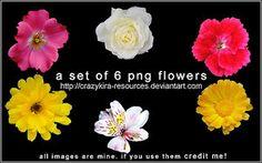 crazykira-자원으로 꽃 renders01